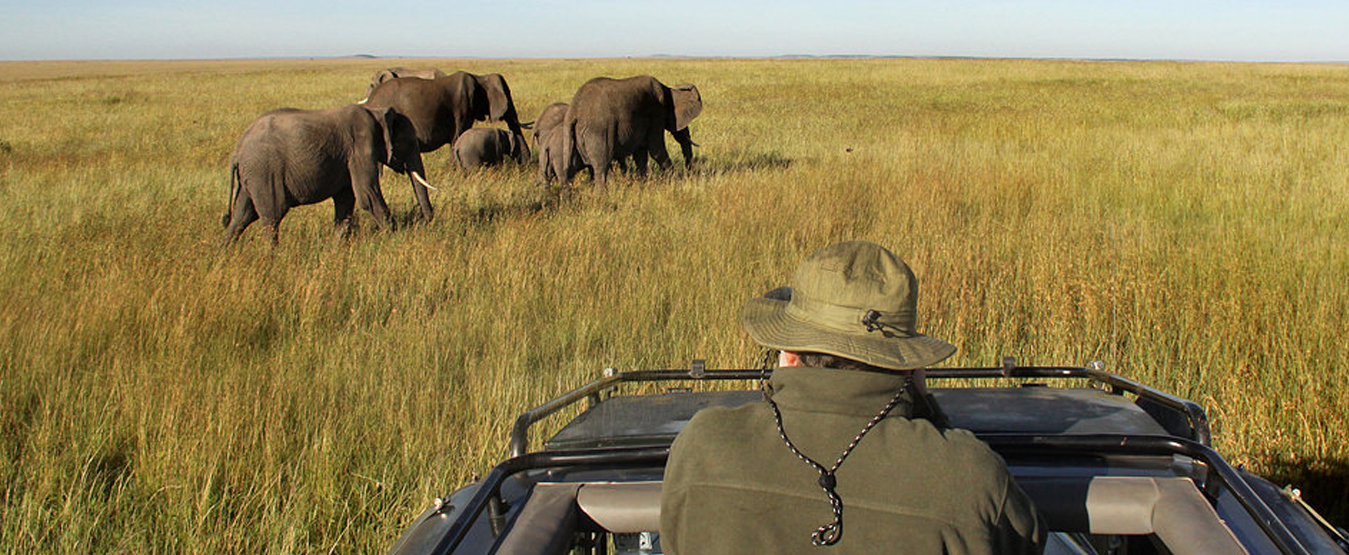 Africa-Best-of-Kenya-7-game-drive